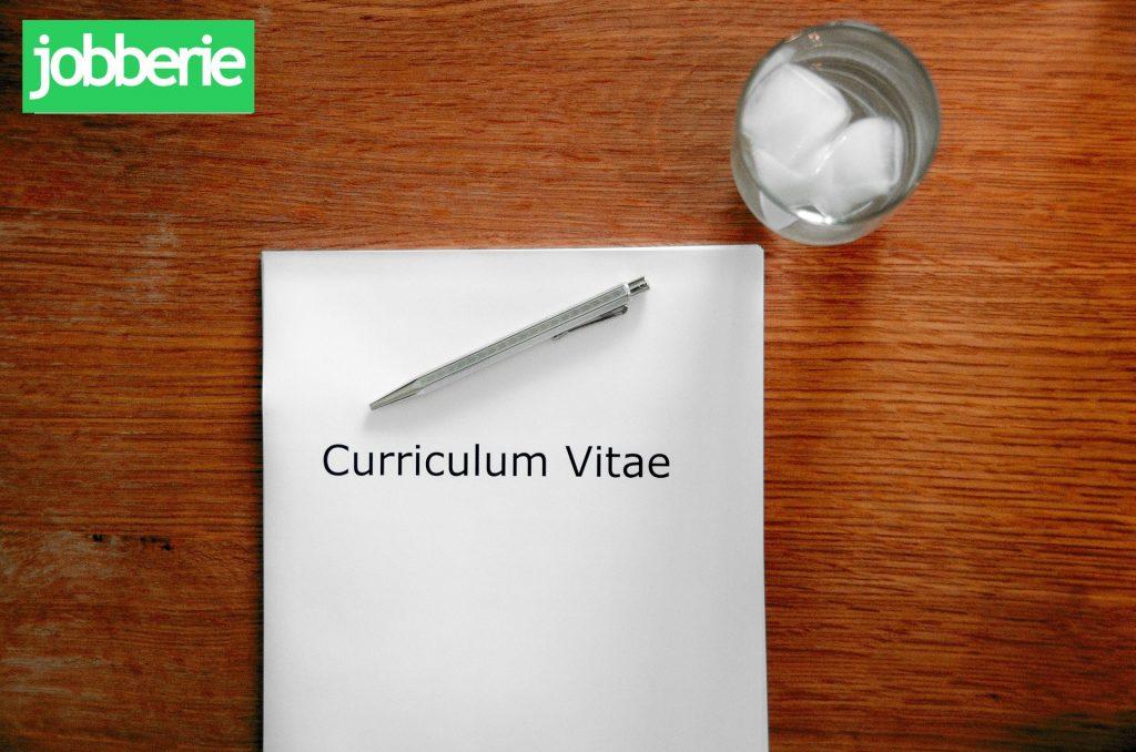 curriculum vitae passgenauigkeit lebenslauf jobberie